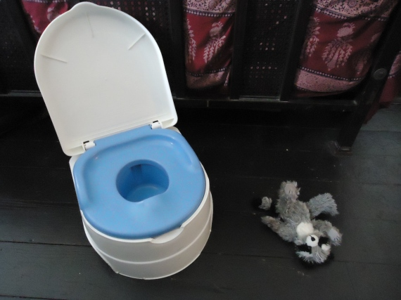 Yes, My Six-Year-Old's Not Quite Potty Trained